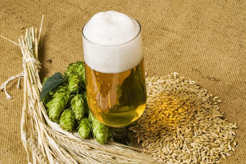 Как сварить дома пиво из хмеля
